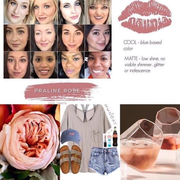 Lipsense Makeup Praline Rose By Senegence Lip Color Poshmark